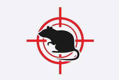 Masterkill Pest Control